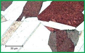 Chuẩn bị bề mặt của mẫu hợp kim đồng